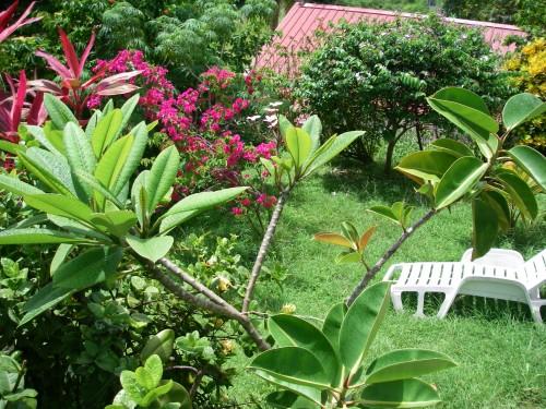 Le jardin de la villa