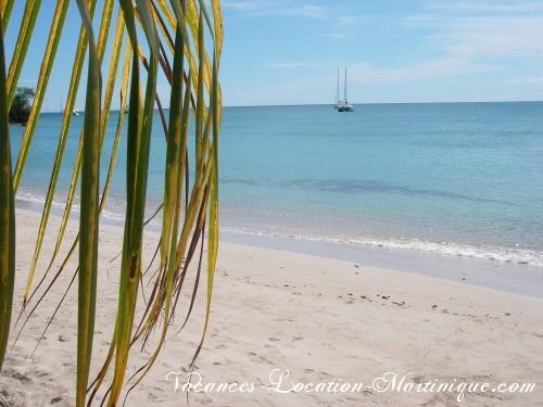 Cette plage est à 500m de la villa (Anse tonnoir). On voit très bien le rocher du Diamant quand on nage. Plage calme.